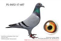 PL-0452-17-607