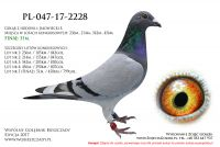 PL-047-17-2228