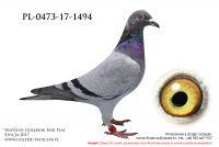 PL-0473-17-1494