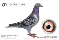 PL-0473-17-1704