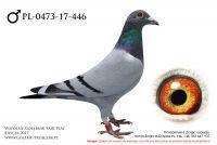 PL-0473-17-446