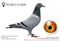 PL-0473-17-6218