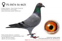 PL-0474-16-4621