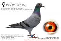 PL-0474-16-4643