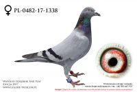 PL-0482-17-1338