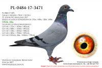 PL-0484-17-3471