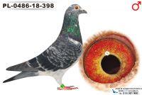 PL-0486-18-398_samiec