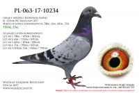 PL-063-17-10234