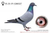 PL-DE-19-1200327 - samiczka