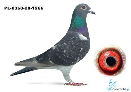 Poz. 15 PL-0368-20-1266