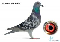 Poz. 18 PL-0368-20-1283