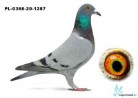 Poz. 20 PL-0368-20-1287