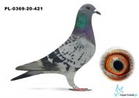 Poz. 21 PL-0369-20-421