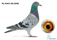 Poz. 9 PL-0361-20-5290