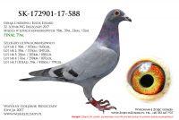 SK-172901-588
